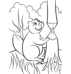 happy beaver in the forest vector image
