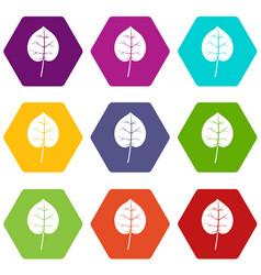 Linden leaf icon set color hexahedron vector