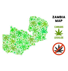 Royalty free marijuana leaves composition zambia vector