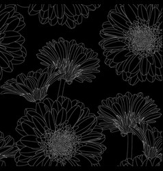 seamless pattern with hand drawn gerbera flowers vector image