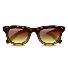spotted sunglasses isolated on white vector image