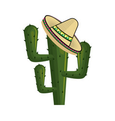 cactus with mexican hat with thorns vector image vector image