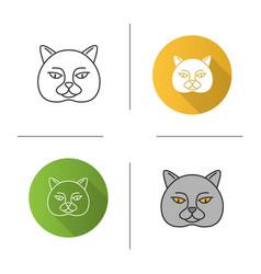 british shorthair cat icon vector image