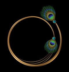 frame with peacock feathers and turquoise vector image