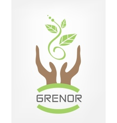 Human hands hold green plant vector image