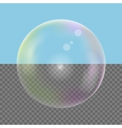 Realistic Soap bubble vector