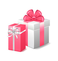 two gifts isolated on white vector image