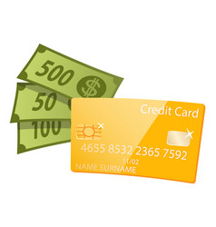 Money dollars in cash plastic credit card icon vector