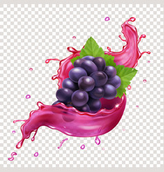 red grapes juce splash realitic vector image
