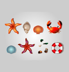 Sea set of lifebuoys shells crab starfish and sea vector