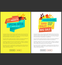 special offer big sale posters vector image