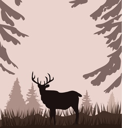Deer in the woods vector
