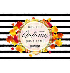 fashion hello autumn sale vector image