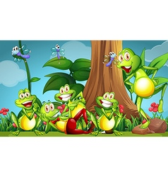 Five frogs and dragonflies in the garden vector image