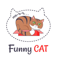 funny brown cat sleep in open red box makes sound vector image