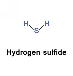 Hydrogen sulfide poisonous vector