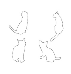 Paths of Cats set on the white background vector