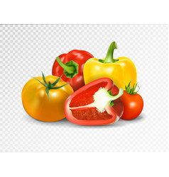 Photo-realistic red tomato and paprika vector