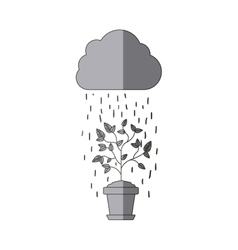 Plant pot cloud and rain design vector