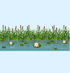 Pond with lotus water lilies and grass reeds lake vector