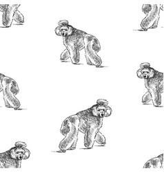 seamless background sketches cute walking vector image