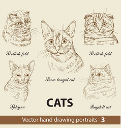 set hand drawing cats 3 vector image