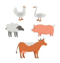 Set of Domestic Animals Flat Design vector