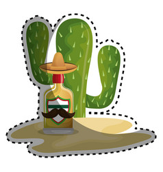 sticker background cactus with bottle of tequila vector image
