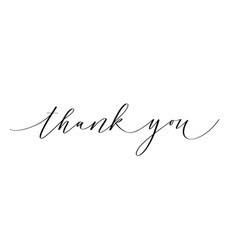 thank you ink pen modern classy calligraphy design vector image