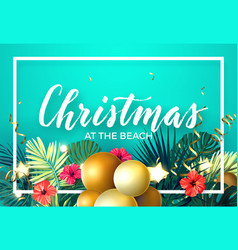 tropical christmas on beach design with vector image