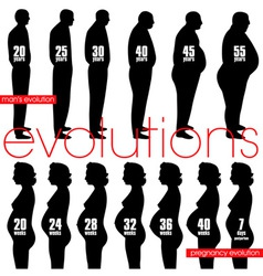 Men obesity evolution and pregnancy stages vector