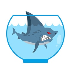 Shark in Aquarium Angry Marine predator with large vector image vector image