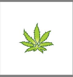 marijuana leaf logo vector image