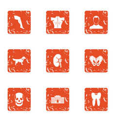 appendage icons set grunge style vector image