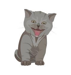 British shorthair kitten breed flat vector