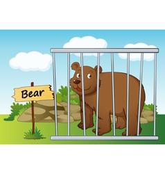 Cartoon zoo bear vector