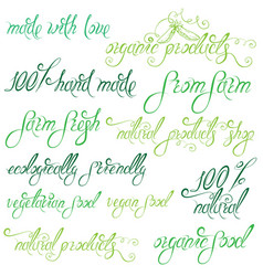 Collection of delicious vegetables signs elements vector