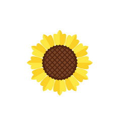 sunflower icon design template vector image