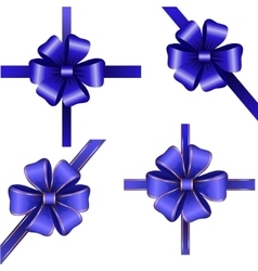Sset of blue gift bows with ribbons vector image vector image