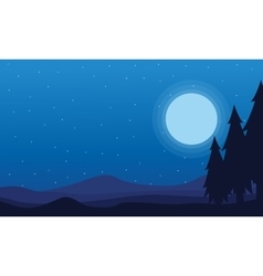 At night Spruce and hill scenery of silhouettes vector image