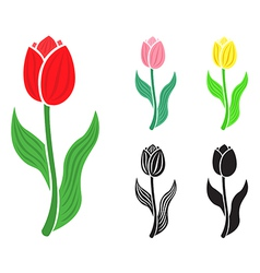 Flower tulips emblem vector
