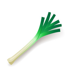 Green leek icon isolated organic healthy food vector