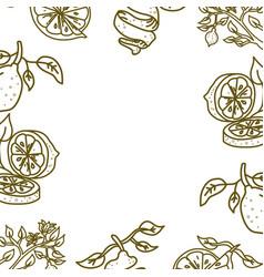 Lemon fruit frame empty template vector