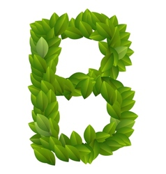 Letter B of green leaves alphabet vector image