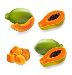 papaya set pawpaw slice and whole juicy fruit vector image