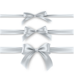 set silver bow and ribbon on white background vector image