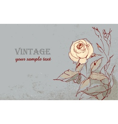 Vintage postcard with a beautiful rose hand-drawin vector