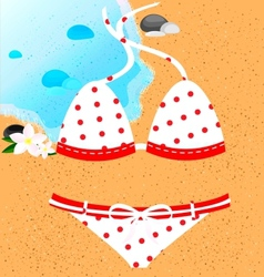 White-red swimsuit vector