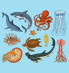fishes set or sea creature nautilus pompilius vector image vector image