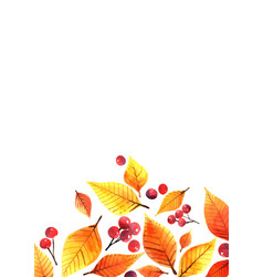 Autumn leaves and red berries watercolor vector
